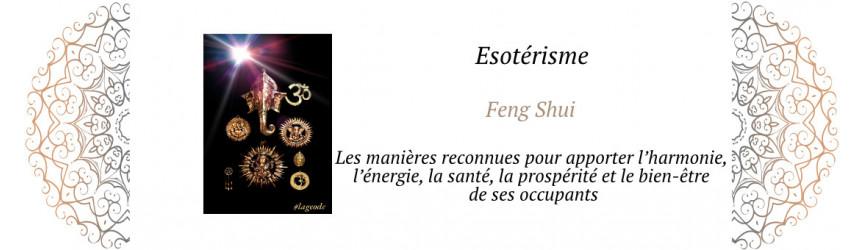 Le Feng Shui de la Géode 66